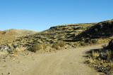 Rough dirt road to Cerro Asogini