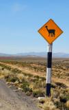 Vicuña crossing sign, Peru