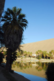 Lagoon of Huacachina