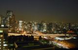 View from the Grand Hyatt São Paulo at night