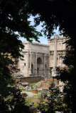Arch of Septimius Severus seen through the trees to the south of the Forum