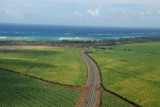 Crossing the Hana Highway while climbing out over the sugar cane fields of Maui's central valley