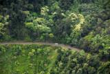 Most of the Hana Highway is hidden by dense vegetation