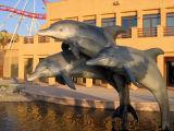 Dolphins, Dubailand Sales Center