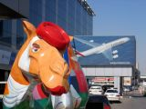 Emirates Group Headquarters, Dubai, with a painted camel in cabin crew signature red hat