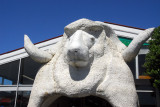 Sheep & Wool Center, Hokitika
