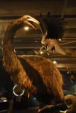 Te Papa - giant moa attacked by giant eagle