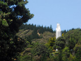 Large statue of the Virgin Mary about 30 min north of Wellington off Hwy 1