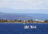 Sailboats on Lake Taupo