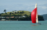 NZL41 flying a red spinnaker in front of Devonport's North Head
