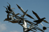 Modern metal sculpture of birds in flight, Teacher-Student Center, Dhaka University
