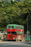 Double decker bus in the national colors, red and green