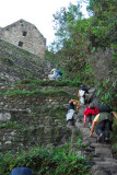 Terraces as the top of Wayna Picchu