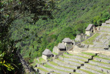 Agricultural terraces with restored huts near the entrance to Machu Picchu