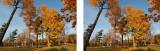 Hampton Park in 3D