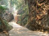 Thailand, March 2007