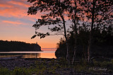 30.12 - Split Rock Lighthouse:  Rose Sunrise At Little Two Harbors With Birch Trees