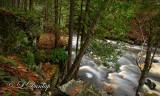89.1 - Sturgeon River Detail, Canyon Falls Area