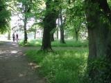 Walking towards Castle Howard
