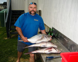 Snapper, Whatuwhiwhi, New Zealand