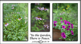 Challenge:In the Garden...There is Peace