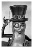 Mr Peanut