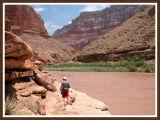 Muddy Little Colorado River