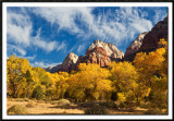 Autumn in Zion