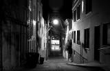 quite alley
