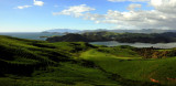 green field of NZ