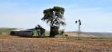 abandon barn and windmill
