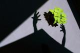 Patio Shadow #1