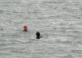 Swimmers via zoom lens of the Powershot