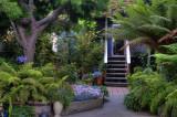 7/5/08- Coalesce Book Store Garden