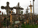 Jumble of crosses