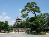 Tree framing the black keep