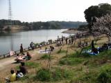 Picnicking around the lake, Sōri-ike