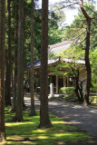Forested path leading to Hōdō-ji