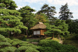 Teahouse and sculpted greenery, Oyaku-en