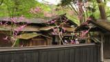 Iwahashi-ke residence from outside