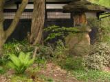Garden within a lesser residence