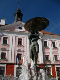 Fountain in front of the Town Hall