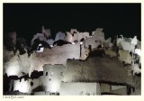 Shali by night I