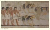 Tomb of Ramose (TT 55) - 7