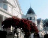 Belmont Street