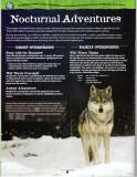 Zoo Mag 002 Wolf Inside.jpg