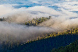 002-Fog and ridges from 35 a bit south of 9_.jpg