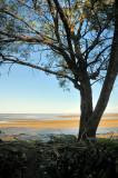 Conway beach 2