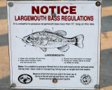 Largemouth Bass Size Limit