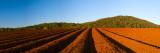 Corrugated Earth